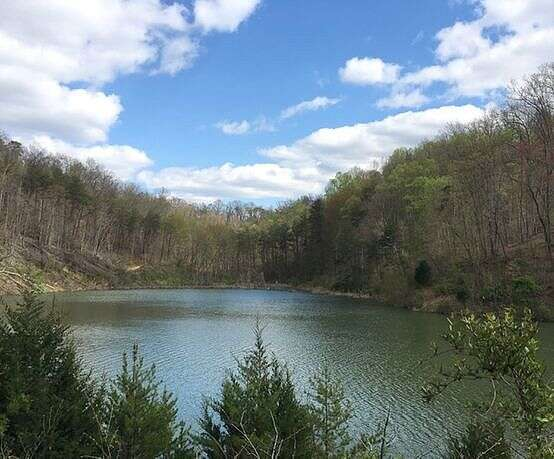 Rockhouse Trace Road (Land), Louisa, KY 41230