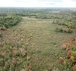Vacant Land (Parcel 65-007-026-005-00) S. M76, Alger, MI 48610