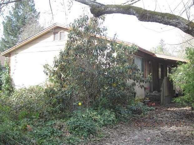 Oak, Redway, CA 95560