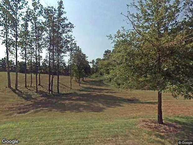 Swans, Lexington, NC 27295