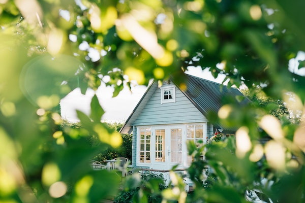 white wooden house in the middle of green trees